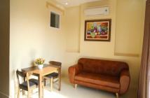 Cho thuê căn hộ cao cấp Sun Village Apartment, 2 phòng ngủ, nội thất đầy đủ giá 3.02 tỷ/căn