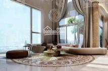 Bán penthouse Sky Garden 3, Phú Mỹ Hưng, quận 7, TP Hồ Chí Minh, diện tích: 250m2, giá: 6.4 tỷ
