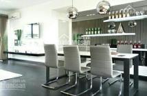 Bán căn hộ Penthouse Riverside Phú Mỹ Hưng Q7, diện tích 200m2, LH : 0911021956.