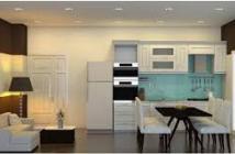 Bán căn hộ KCN Tân Bình 2PN giá 2,4 tỷ. Nhà mới 100% vào ở ngay, CK ưu đãi + free 18 tháng phí QLCC