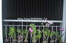 Chung cư Hưng Ngân Garden cần bán gấp giá tốt